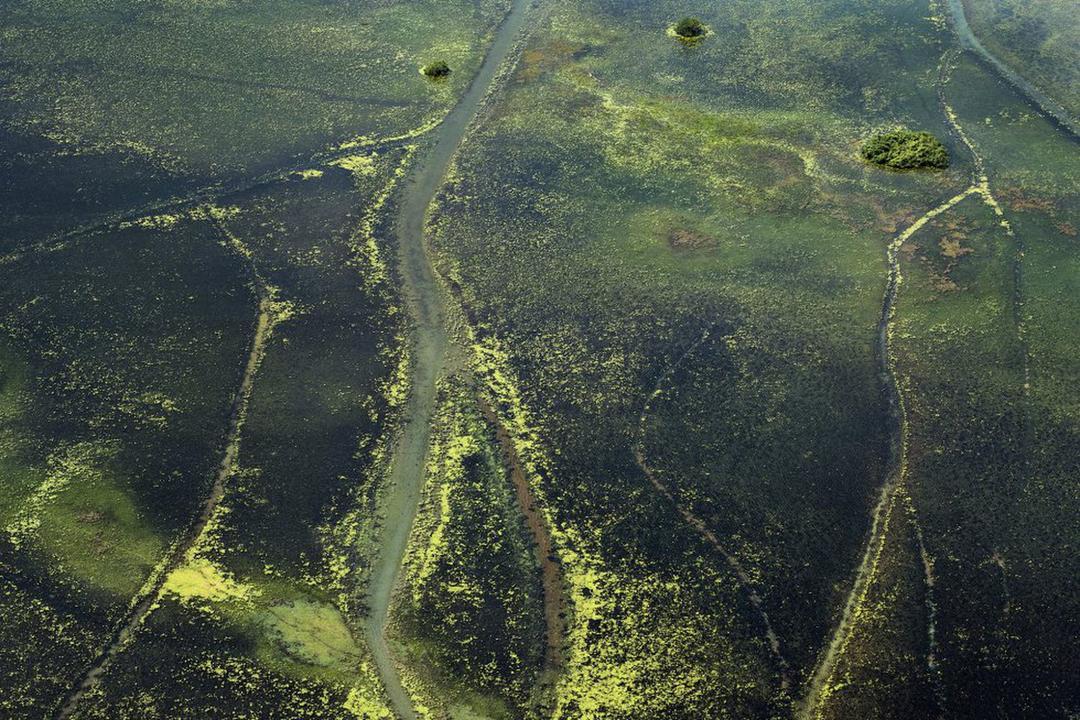 Parlamentares manobram para diminuir área de reserva ambiental em Roraima e Amapá