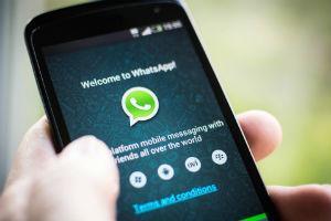 Nova política de privacidade do WhatsApp terá período de observação