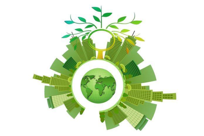 O ESG e os produtos orgânicos