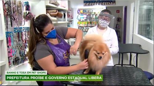 Funcionamento de pet shops causa polêmica em São Paulo